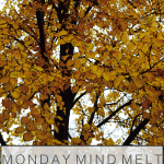 monday mind melt, fall leaves, fall, autumn, golden leaves, tree
