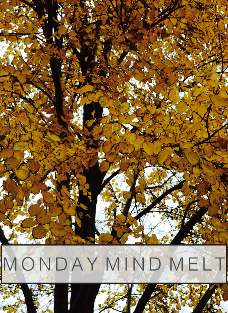 Monday Mind Melt #3 – Photography tips, mom life, and fall vibes.